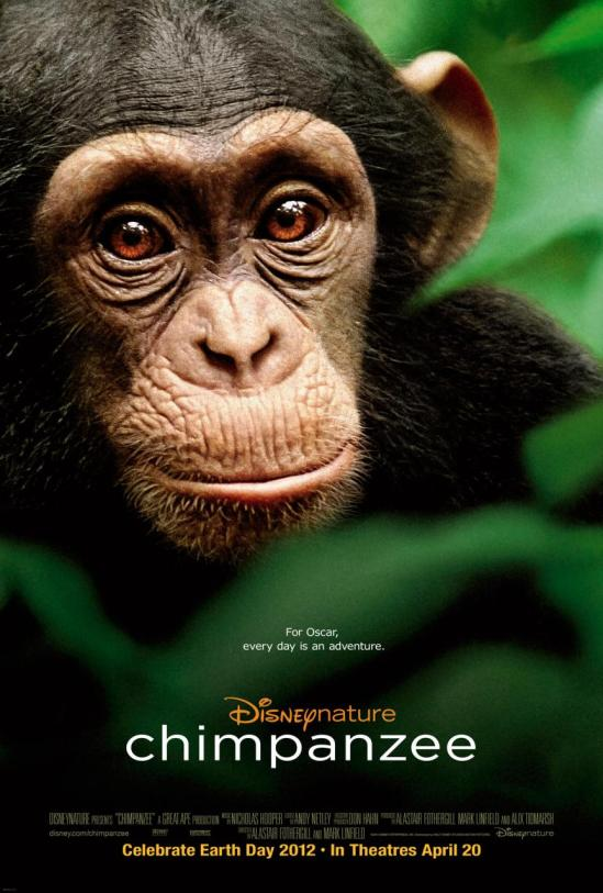 Disney's Chimpanzee